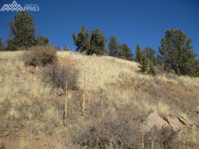93 Wellington Drive, Cripple Creek, CO 80813 (#9871497) :: CENTURY 21 Curbow Realty