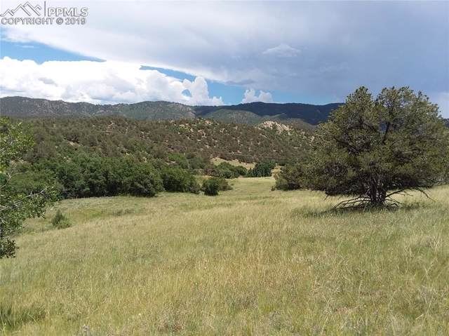 Lot 27 Backacres Road, Canon City, CO 81212 (#9872814) :: Action Team Realty