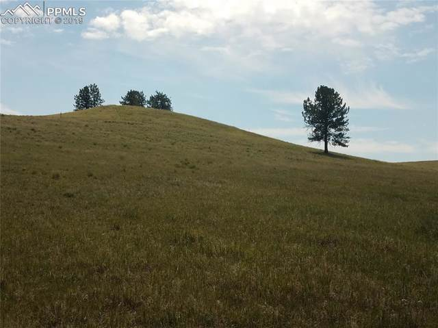 TBD County Road 403, Florissant, CO 80816 (#9874576) :: 8z Real Estate