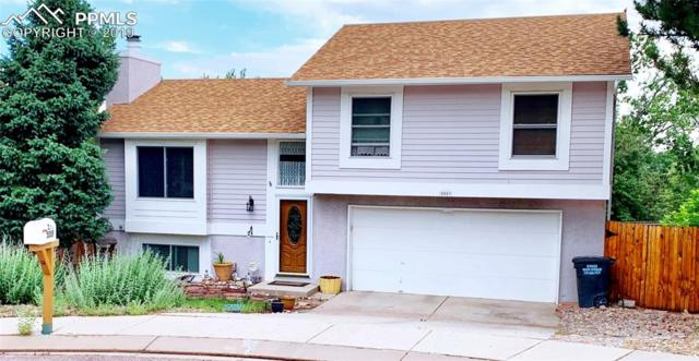 5559 Country Heights Court, Colorado Springs, CO 80917 (#9875504) :: Action Team Realty