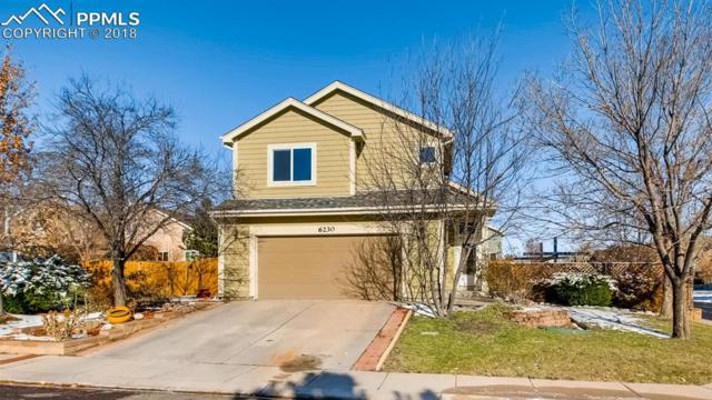 6230 Herriot Grove, Colorado Springs, CO 80922 (#9876005) :: Venterra Real Estate LLC