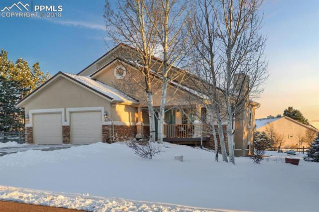 345 Rangely Drive, Colorado Springs, CO 80921 (#9877647) :: The Treasure Davis Team