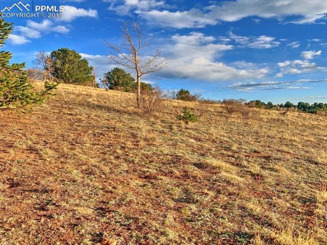TBD County 1 Road, Cripple Creek, CO 80813 (#9881586) :: Action Team Realty
