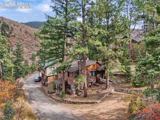 10145 Wildwood Road, Cascade, CO 80809 (#9882831) :: 8z Real Estate