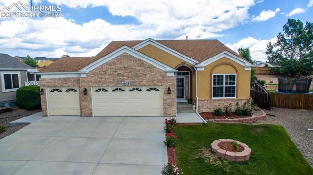 6624 Balance Circle, Colorado Springs, CO 80923 (#9885523) :: The Daniels Team