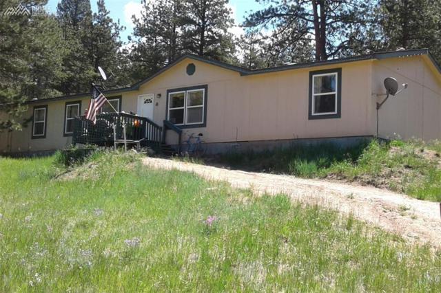 3359 Pikes Peak Drive, Florissant, CO 80816 (#9886336) :: 8z Real Estate