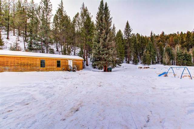 4019 County 1 Road, Cripple Creek, CO 80813 (#9888225) :: 8z Real Estate