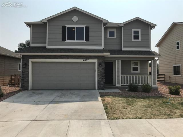 4087 Silver Star Grove, Colorado Springs, CO 80911 (#9890616) :: 8z Real Estate
