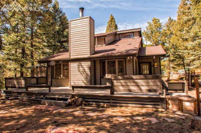 358 High View Circle, Woodland Park, CO 80863 (#9892512) :: Jason Daniels & Associates at RE/MAX Millennium