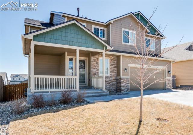 4761 San Amels Way, Colorado Springs, CO 80911 (#9892519) :: Harling Real Estate