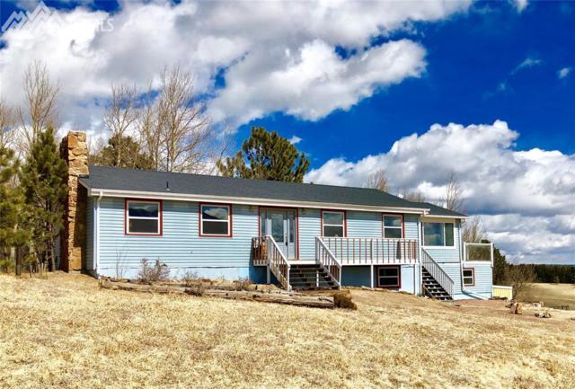 199 Pine Bluff Road, Divide, CO 80814 (#9894919) :: The Peak Properties Group
