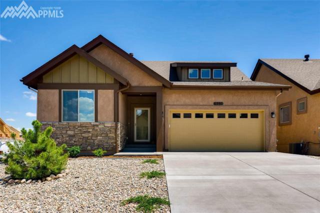 6591 Petaluma Point, Colorado Springs, CO 80923 (#9899357) :: The Treasure Davis Team