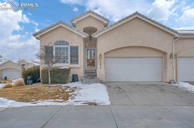 14414 Summer Glen Grove, Colorado Springs, CO 80921 (#9899555) :: Action Team Realty