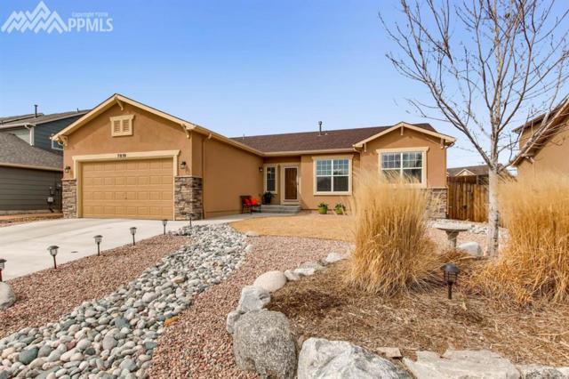 7819 Renegade Hill Drive, Colorado Springs, CO 80921 (#9899685) :: The Hunstiger Team
