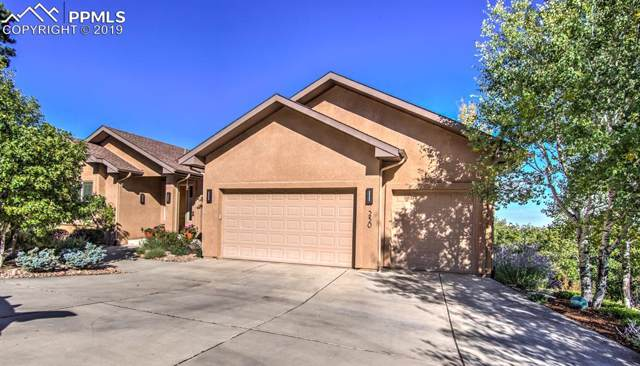 250 Stonebeck Lane, Colorado Springs, CO 80906 (#9899732) :: CC Signature Group