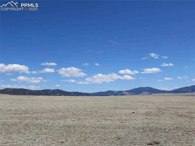 000 Stoll Mountain Road, Lake George, CO 80827 (#9901039) :: The Daniels Team