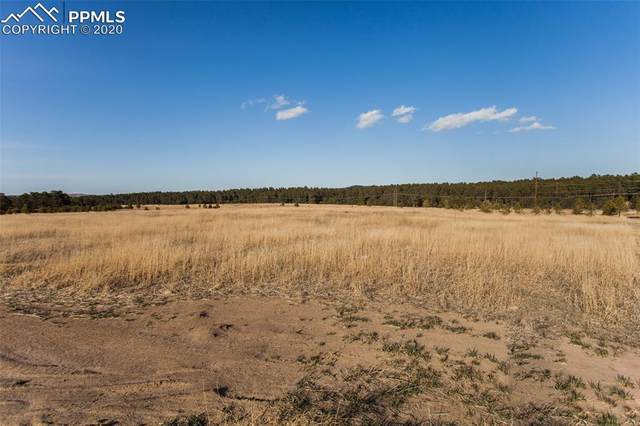 17041 Jackson Ranch Court, Monument, CO 80132 (#9901098) :: Action Team Realty