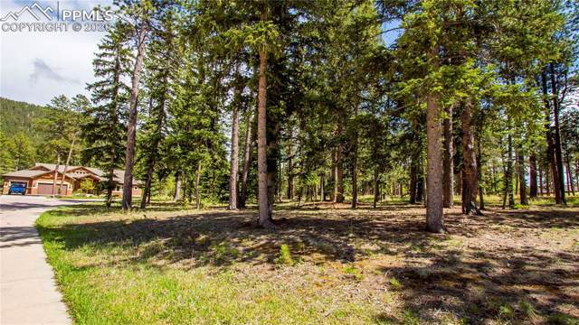 650 Chipmunk Drive, Woodland Park, CO 80863 (#9902476) :: Tommy Daly Home Team