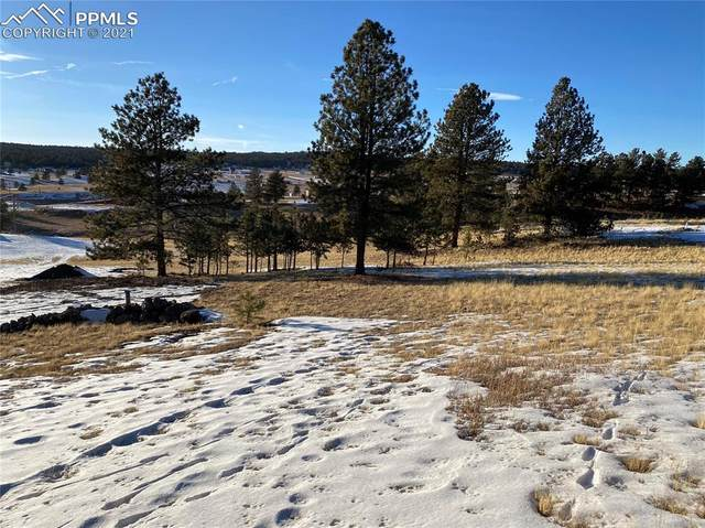186 Empire Road, Florissant, CO 80816 (#9903024) :: Action Team Realty
