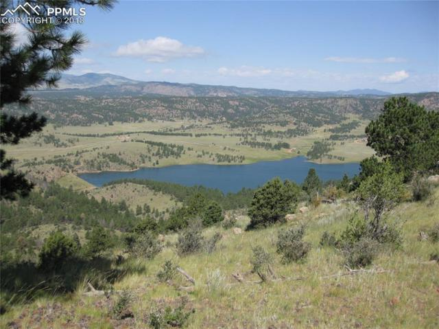 Unknown Unknown, Cripple Creek, CO 80813 (#9903554) :: 8z Real Estate