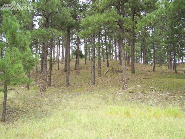 18495 Steeplechase Drive, Peyton, CO 80831 (#9904727) :: The Peak Properties Group