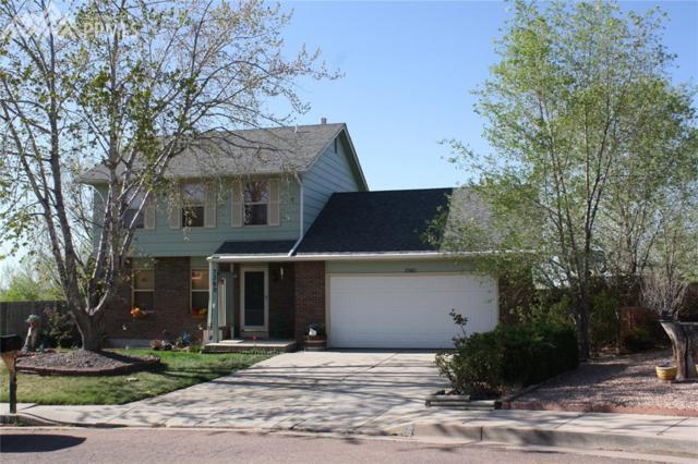 7360 Buffalo Springs Court, Colorado Springs, CO 80911 (#9905177) :: Fisk Team, RE/MAX Properties, Inc.