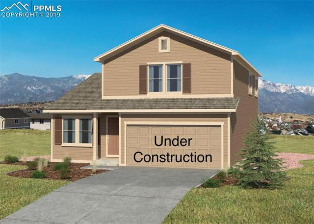 10888 Traders Parkway, Fountain, CO 80817 (#9905392) :: Action Team Realty