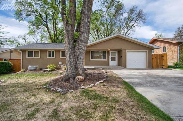 1007 Venus Drive, Colorado Springs, CO 80905 (#9907496) :: The Treasure Davis Team