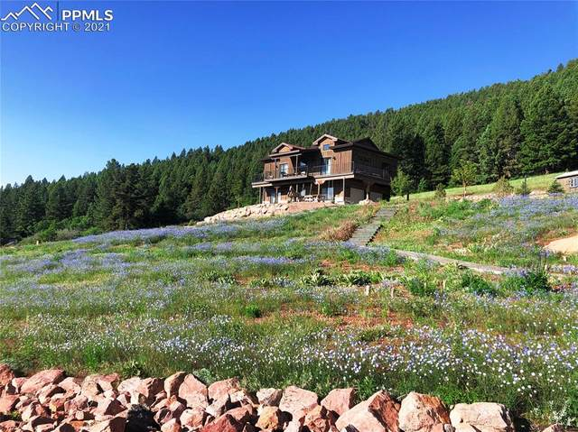 15367 Sierra Pines Lane, Larkspur, CO 80118 (#9908384) :: The Treasure Davis Team | eXp Realty