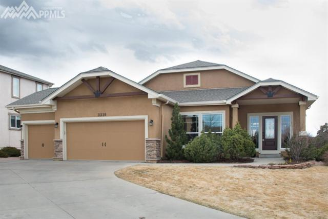3319 Silver Pine Trail, Colorado Springs, CO 80920 (#9908584) :: Jason Daniels & Associates at RE/MAX Millennium