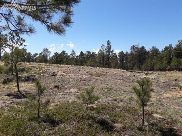 5710 Saxton Hollow Road, Colorado Springs, CO 80908 (#9915597) :: 8z Real Estate