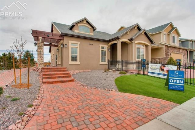 8436 Briar Brush Lane, Colorado Springs, CO 80927 (#9916979) :: The Peak Properties Group