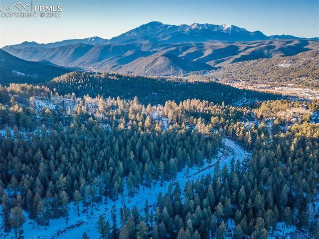 TBD Spacious Skies Drive, Woodland Park, CO 80863 (#9918969) :: CC Signature Group