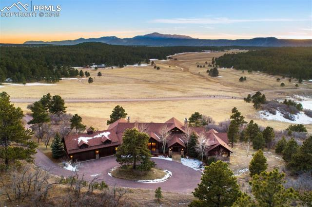 4409 Triple Eagle Trail, Larkspur, CO 80118 (#9920742) :: Tommy Daly Home Team
