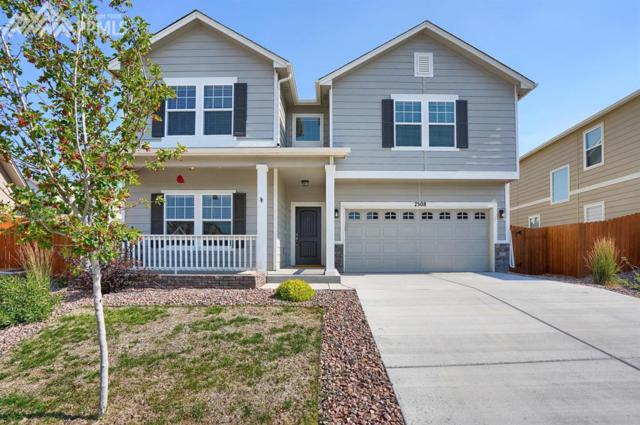 7508 Lost Pony Place, Colorado Springs, CO 80922 (#9921039) :: The Peak Properties Group
