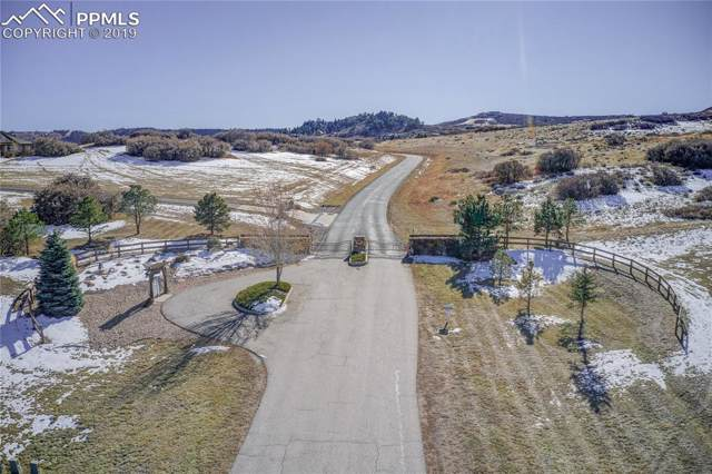 3695 Ranch Gate Court, Castle Rock, CO 80104 (#9922436) :: The Kibler Group