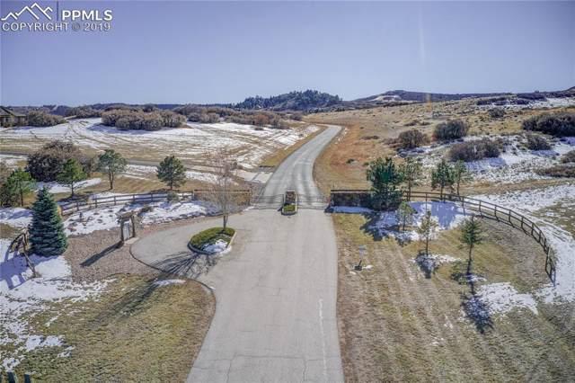 3695 Ranch Gate Court, Castle Rock, CO 80104 (#9922436) :: The Daniels Team