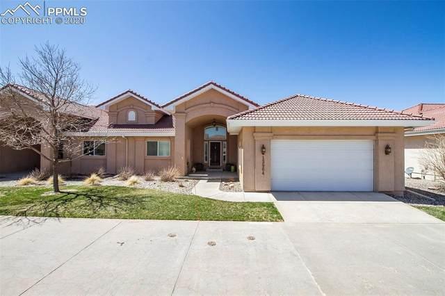 13964 Paradise Villas Grove, Colorado Springs, CO 80921 (#9927851) :: Action Team Realty