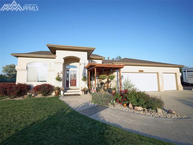 5205 Sapphire Drive, Colorado Springs, CO 80918 (#9928132) :: 8z Real Estate