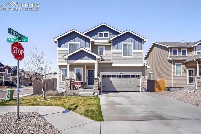 6286 Wild Turkey Drive, Colorado Springs, CO 80925 (#9928373) :: The Treasure Davis Team