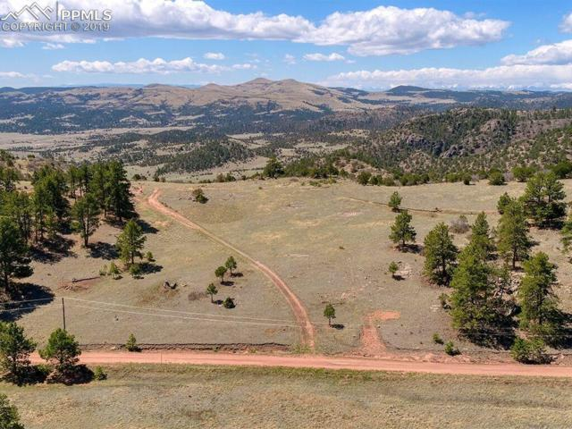 1131 Apache Road, Florissant, CO 80816 (#9928406) :: The Peak Properties Group