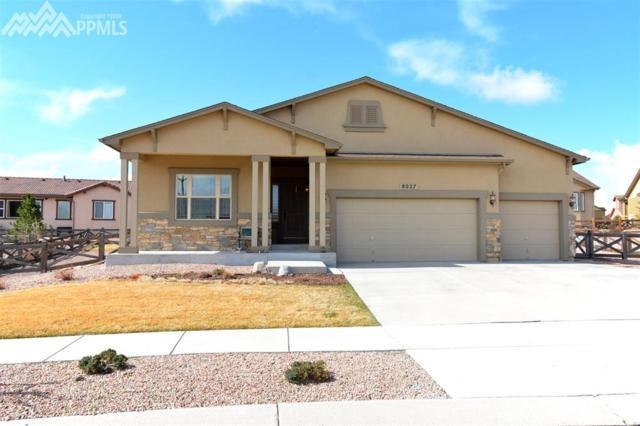 8027 Bigcone Circle, Colorado Springs, CO 80927 (#9929569) :: RE/MAX Advantage