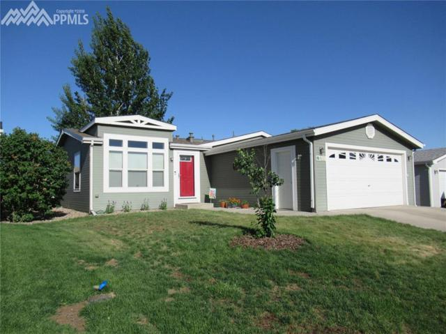 4632 Pika Point, Colorado Springs, CO 80922 (#9933469) :: Action Team Realty