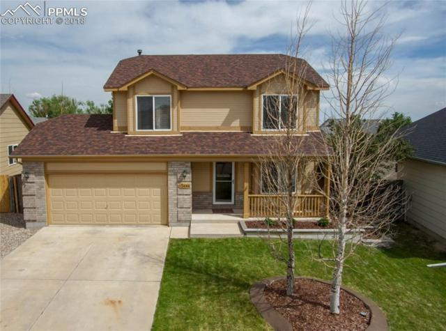 12644 Catch Pen Road, Peyton, CO 80831 (#9933902) :: CENTURY 21 Curbow Realty