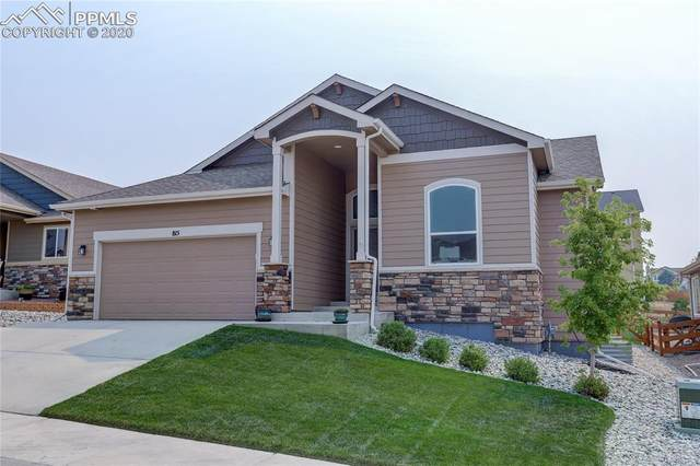 815 Tailings Drive, Monument, CO 80132 (#9934863) :: 8z Real Estate