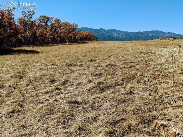 Lot 151 Becker Road, Colorado City, CO 81019 (#9937665) :: The Treasure Davis Team