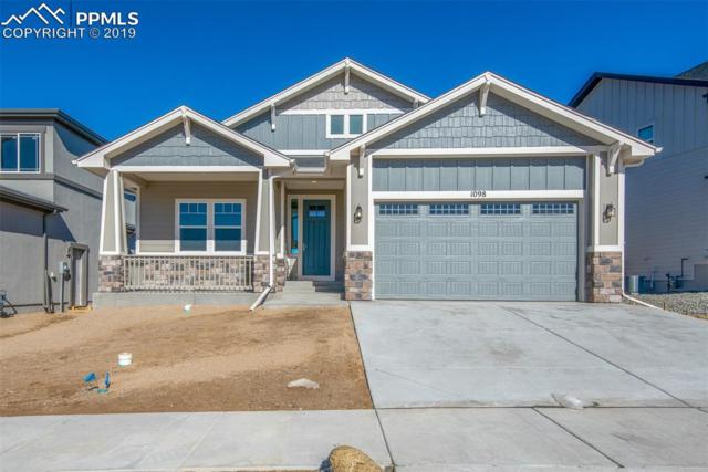 1098 Barbaro Terrace, Colorado Springs, CO 80921 (#9939470) :: The Treasure Davis Team