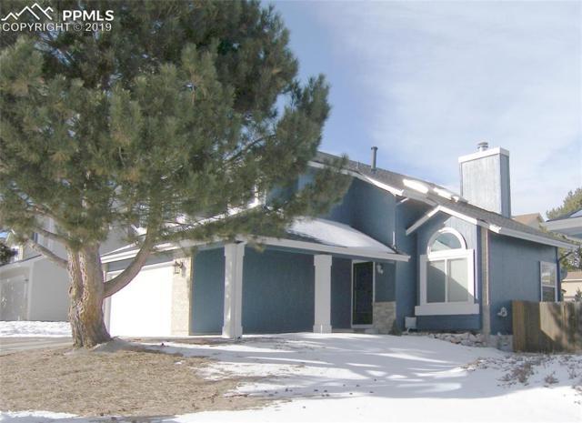3540 Birnamwood Drive, Colorado Springs, CO 80920 (#9940270) :: Action Team Realty