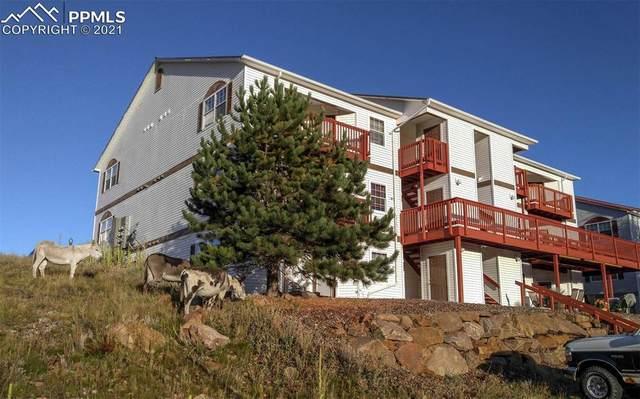124 Whalen Avenue #32, Cripple Creek, CO 80813 (#9940483) :: The Treasure Davis Team | eXp Realty