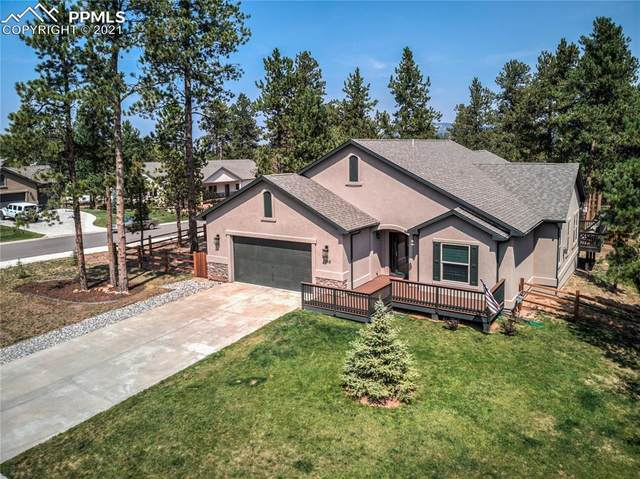 1355 Firestone Drive, Woodland Park, CO 80863 (#9940539) :: Tommy Daly Home Team